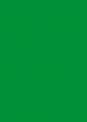 Plakatpapier, DIN A1, leuchtgrün, 50 Plakate pro Pack
